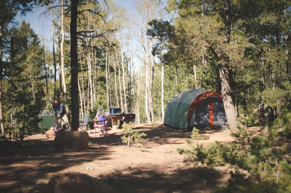 Mueller State Park Campground Review » Needles and a Pen