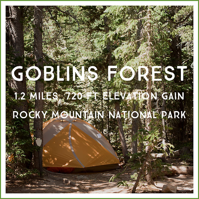 goblins-forest-backpacking-wilderness-site-review